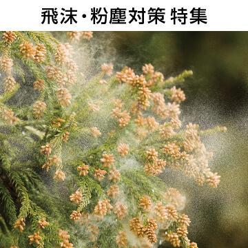 花粉対策メガネ